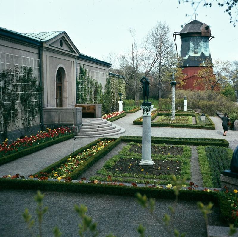 trdägård